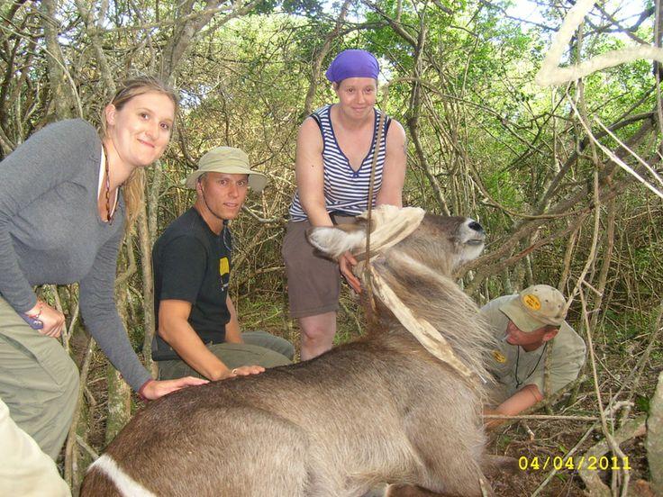 Volunteer world international - Kariega - volunteer program