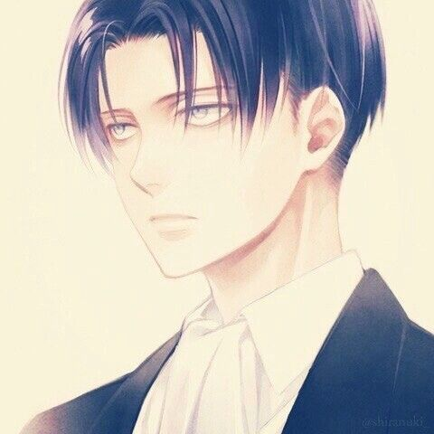 Levi  #levi #anime #snk #aot