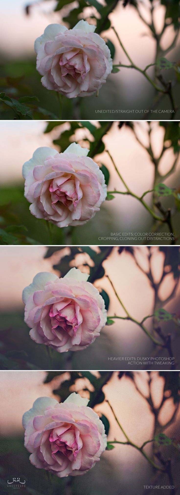 Photo edits evolution. Before and after - cropping, color correction, actions, texture.