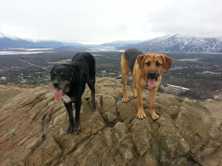 Cooper and Marshall on top of Butte.