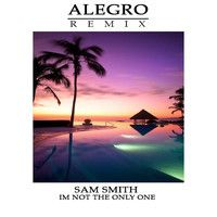 Sam Smith - i'm not the only one (Alegro Remix)