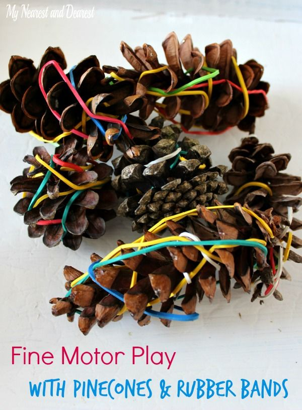 Love this idea! Pinecones and rubber bands fine motor invitation to play.
