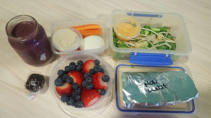 Monday-Healing Berry smoothie(psyllium husk, slippery elm, honey, berries, almond milk) + carrot & hommus & boiled egg + chicken & green salad + blueberries & strawberries + raw protein ball