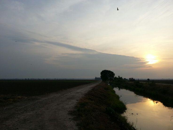 Sunrise at Sekinchan