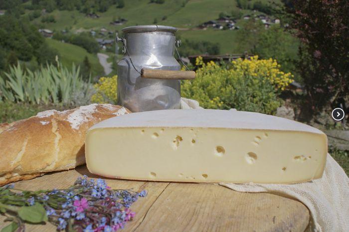 Making an Alpine Raclette Cheese ala Jim Wallace