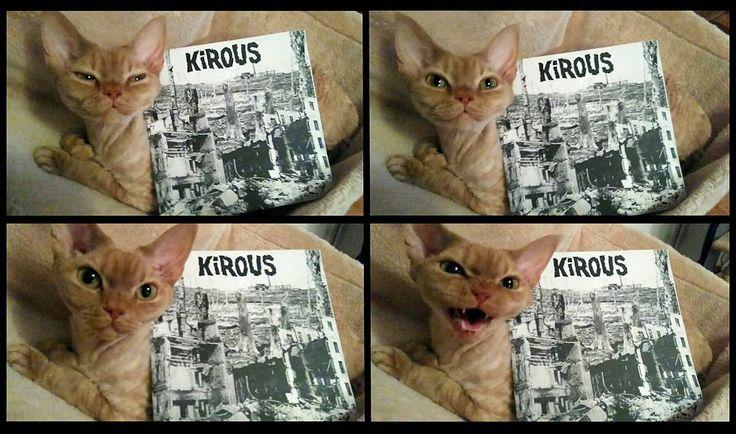 Finn Hardcore for ever!  Kirous - Sivistyksen Rauniot No fashion HC Rec 1998 #ninettethepunkcat #kirous #suomipunk #rawpunk #dbeat #kängpunk #hardcorepunk #hardcorevinyl #punkvinyl #punkrecords #nowspinning #myvinylcollection #vinyljunkie #vinylcollectionpost #finnishpunk #vinyladdict #devonrex #devonrexcat #instacats #instapunk #catswiththeirmouthsopen by ninette_thepunkcat