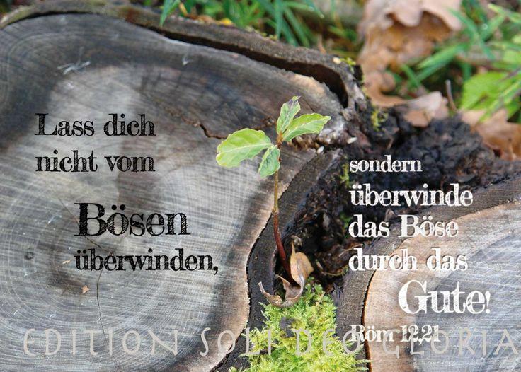 christliche Postkarte 92 - Überwinde das Böse mit Gutem, Jahreslosung 2011, Römer 12,21 - Bibel a la Carte - Christliche Karten