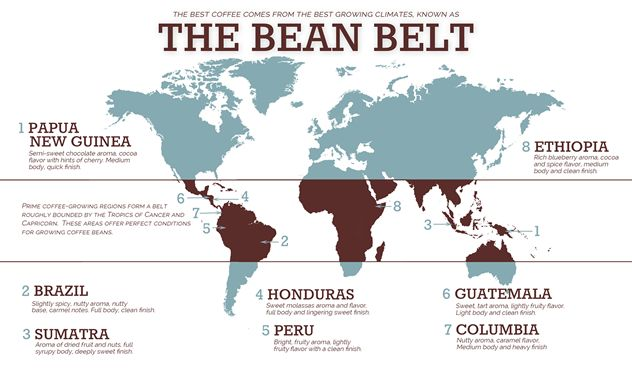 Ever wondered where exactly coffee beans are grown?    Checkout the coffee bean belt, it will make you say, 'huh, I didn't know that'!  Coffee beans are grown in many regions between the Tropic of Cancer to the North and the Tropic of Capricorn below the equator (see coffee bean belt map below).