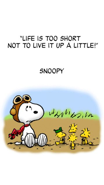 """Life is too short not to live it up a little."" Snoopy and his bird friends."