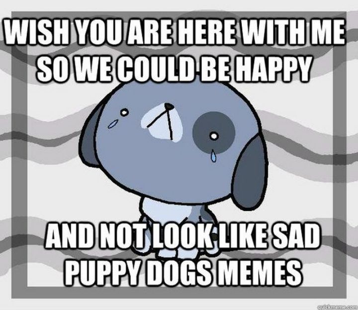 100 Of The Best I Miss You Memes To Send To Your Bae Inspirationfeed In 2021 I Miss You Meme Missing You Memes Love You Meme