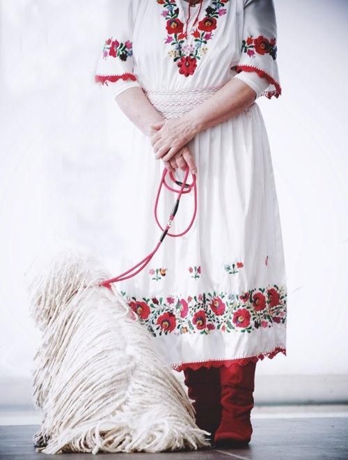I love red boots1                       Puli kutya  :)