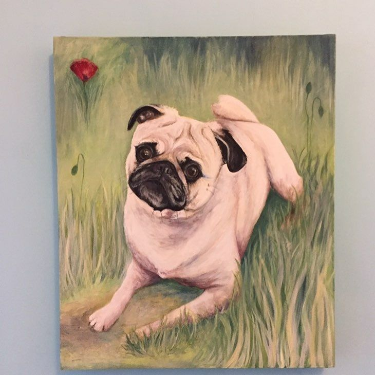 "20"" x 23"" oil painting of a Pug by me"