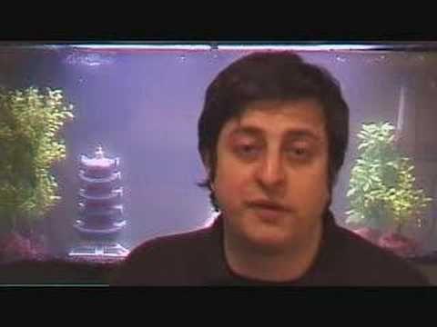 Eugene Mirman - Sexpert - YouTube