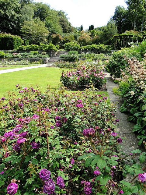 Castle Drogo Gardens, Devon, England