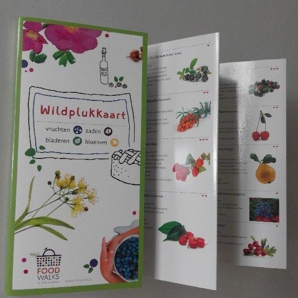 Ik heb een wildplukkaart gekocht omdat ik geïnteresseerd ben in wildplukken. Lijkt het jou ook leuk om eetbare planten, bessen, zaden en bladeren te vinden? Dan is deze plukkaart mi