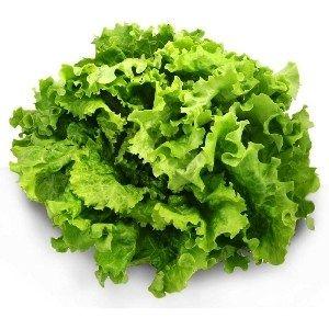 Le mot salade provient de l'italien insalata, « mets salé », plat typique dans la Rome antique et qu'on retrouve dans le provençal salada. Les Romains avaient en effet l'habitude …