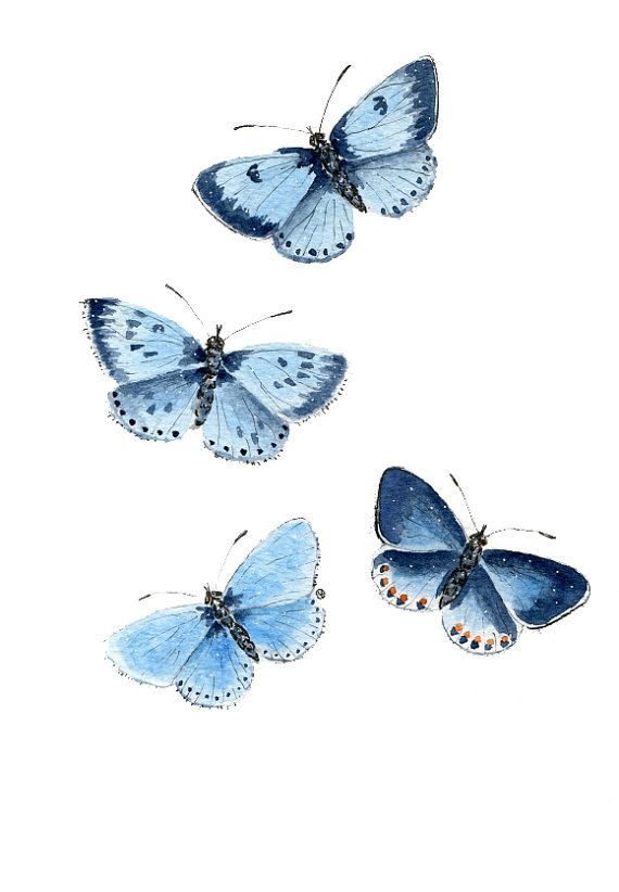 Pintura ORIGINAL  A5 mariposas azules arte de por ForestSpiritArt, £15.00