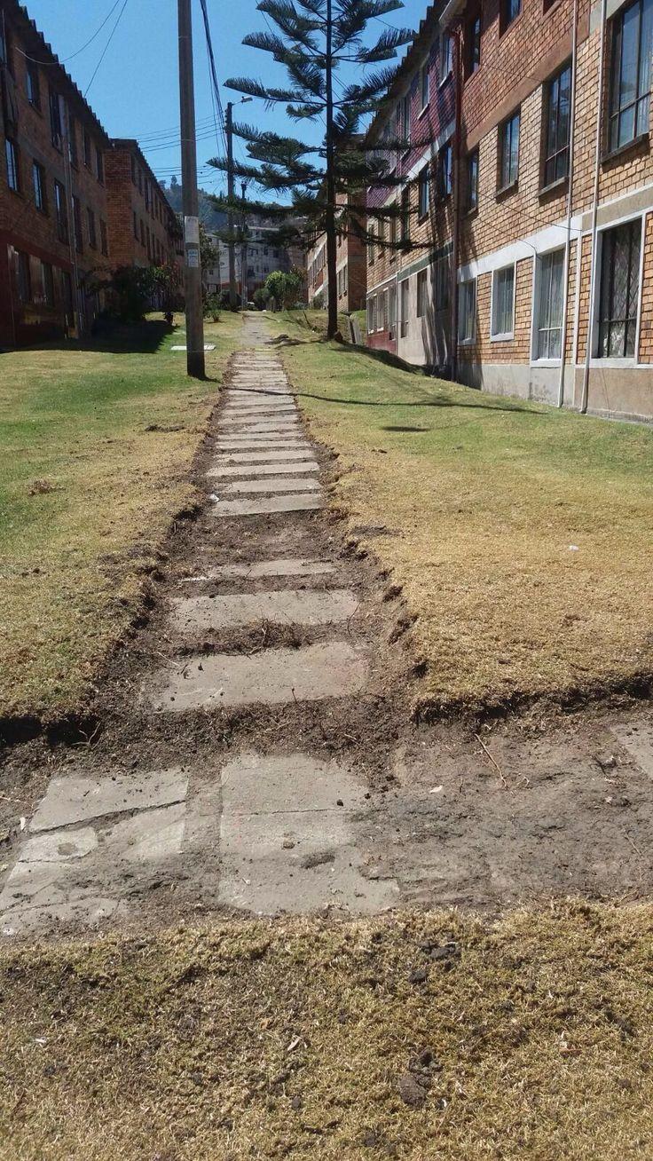 Asi trabaja Aguas de Bogotá SA ESP la empresa del posconflicto. En el barrio Molinos de la localidad Rafael Uribe Uribe, se adelantan actividades de bordeo de zonas verdes.