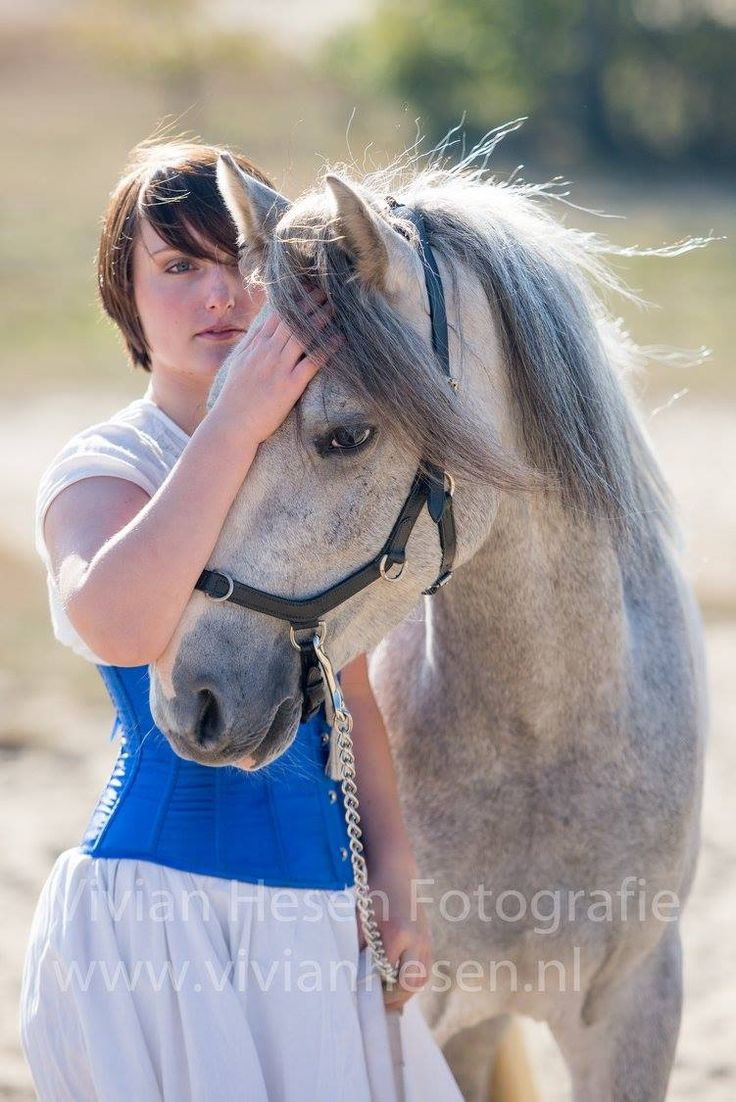 """To understand the soul of a horse is the closest human beings can come to knowing perfection.""    - clickertraining, tricktraining, horse tricks, fantasy, horse training, horse quotes, photography -"