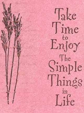 Take Time To Enjoy The Simple Things In Life Quote Via Carols