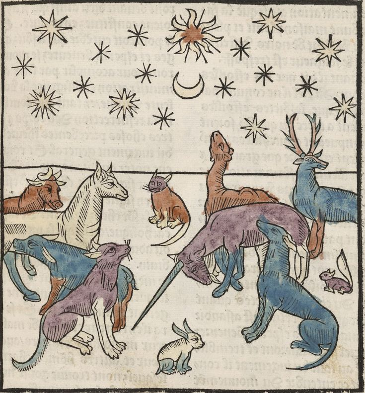"Артефакты, диковинки, интересности... An incredibly striking engraving of animals under a night sky (including a depressed looking unicorn) from Antoine Vérard's 1494 L'Art de bien vivre et de bien mourir (""The Art of Living Well and of Dying Well"")."