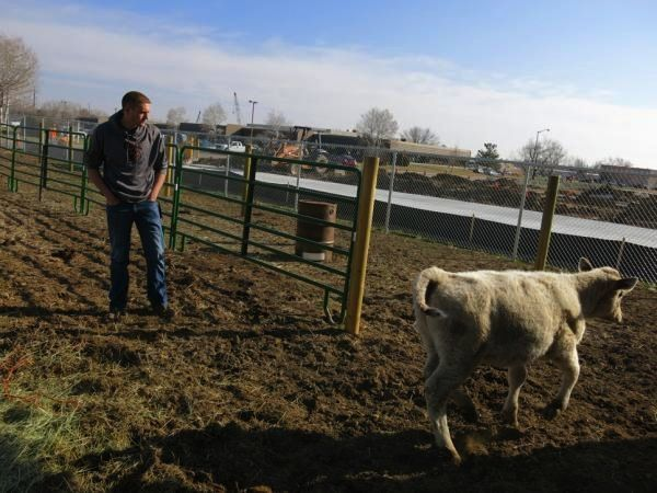 Morning Ag Clips | Daily Agriculture News