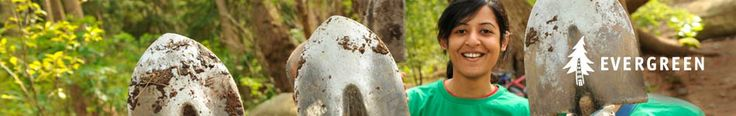 Evergreen.ca - A great source of different types of articles and resources around Outdoor Classrooms and Natural Play