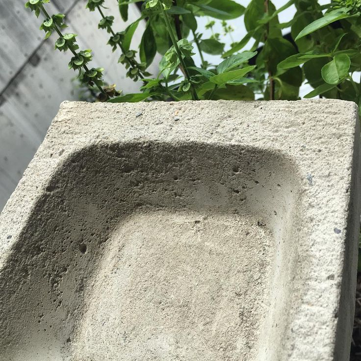 Concrete planter experiments. #landscape #garden #concrete