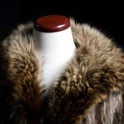 How To Get The Musty Odor Out Of Fur Coats Cases