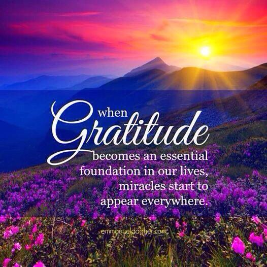 Gratitude is the foundation of our lives!