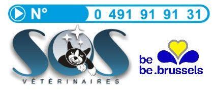 Depuis 2011, SOS Vétérinaires a ouvert en plus de son service à domicile historique, une structure de garde vétérinaire dans le quartier de Tour et Taxis. Renseignements: 0491/91.91.31