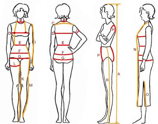 how to find ideal weight according to bone size