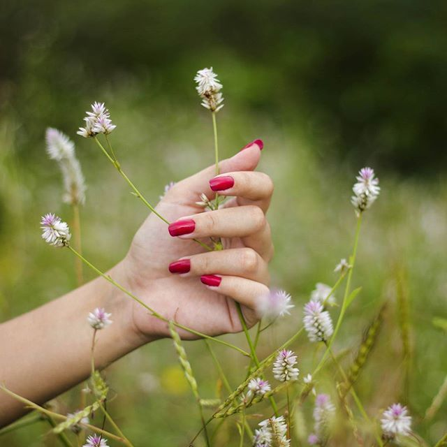 what the heart longs for.. secretly a wish for magic. Photography @sameernadkarni lines @anuja.r Project @allaboutmoments_photography ... #photography #hand #flowers #story #beautiful #landscape #mumbai #portrait #dreamy #nails #nailart #_soi #_soimumbai #creative #india #nature #natgeo #travelling #rsa_mextures #portraitpage #portfolio #portraitphotography #rsa_photo_of_the_day #somberscapes #natureinthehands #maharashtratourism #color #maharashtra_ig