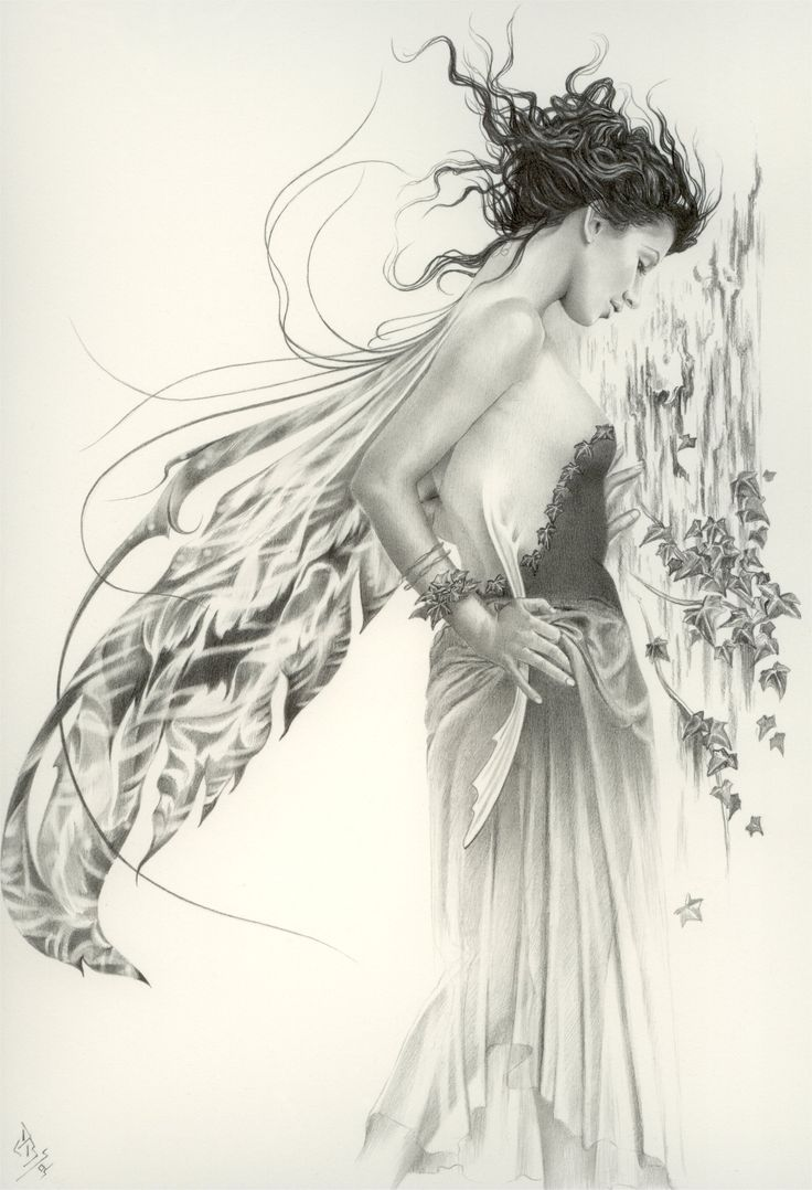 """Wood Nymph. Illus. D Bowes <span class=""""EmojiInput mj40"""" title=""""Heavy Black Heart ❤""""></span>❦♪♫Thanks, Pinterest Pinners, for stopping by, viewing, re-pinning, & following my boards. Have a beautiful day! ^..^ and """"Feel free to share on Pinterest ♡<span class=""""EmojiInput mj230"""" title=""""Black Heart Suit ♥""""></span>♡<span class=""""EmojiInput mj230"""" title=""""Black Heart Suit ::hearts::""""></span> #fairytales4kids #elfs #Fantasy #fairies"""