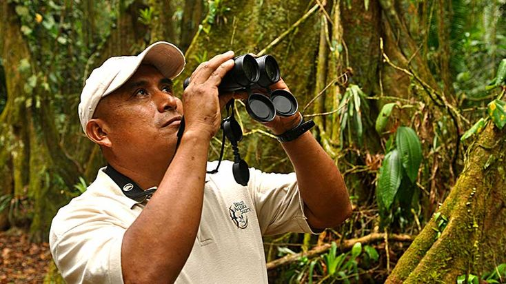 Belize Audubon Society   –  Cockscomb Basin Wildlife Sanctuary