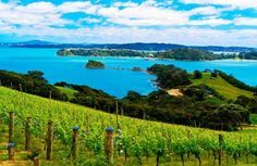Things to do in Auckland Auckland is a major city in the north of New Zealand's North Island. Auckland is among the lovely places in New Zealand like Christchurch, Hamilton,... #AlbertPark #AoteaSquare #Auckland #Aucklandattractions #AucklandDomain #AucklandHarbourBridge #AucklandTownHall #AucklandZoo #BestthingstodoinAuckland #britomart #BrownsIsland #EdenPark #FreethingstodoinAuckland...