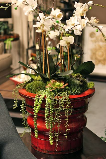 Arrange potted plants (doubling as favors) in one larger pot, use sheet moss to cover.  Would be fun to use a mix of orchids, succulents, etc.   #DIY  #weddingfavor