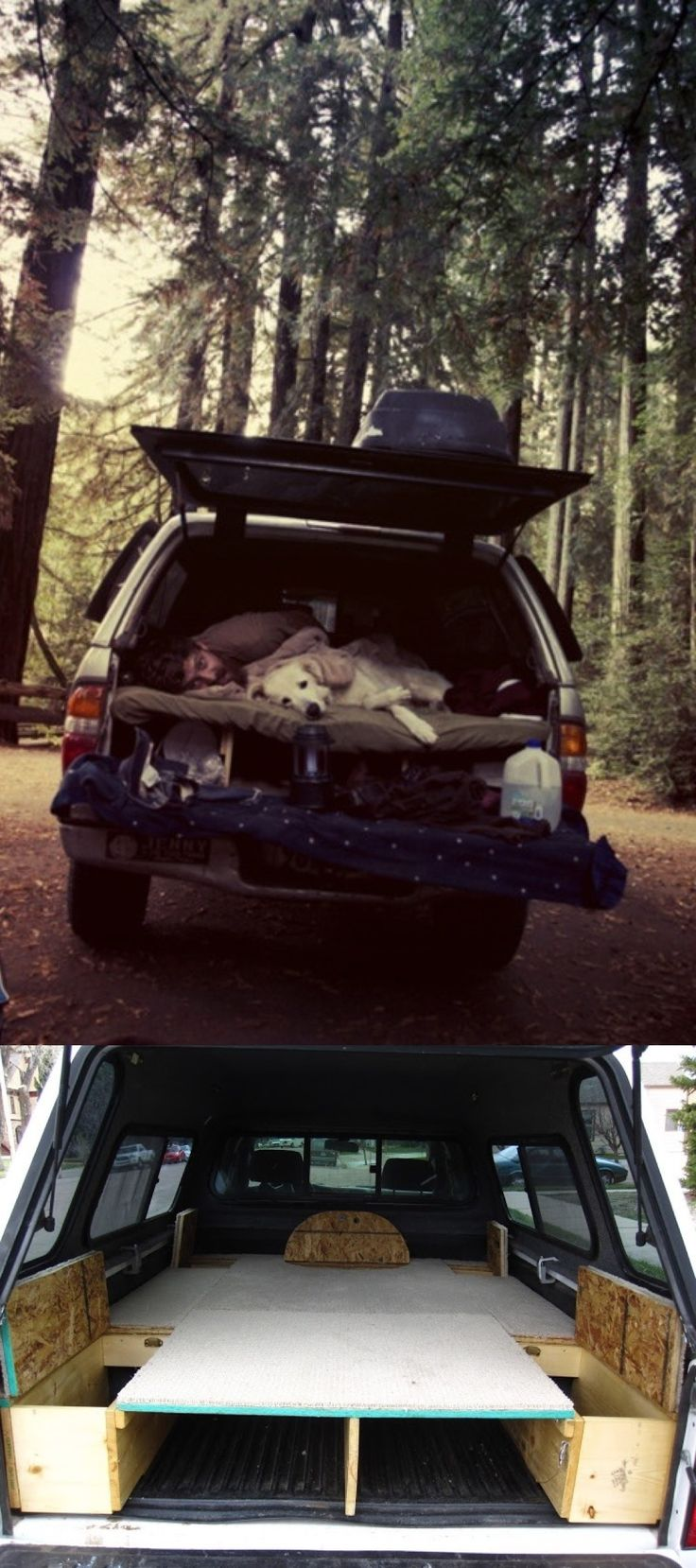 A man a dog a bed in back of the car and the beautiful outdoors what more does a girl need
