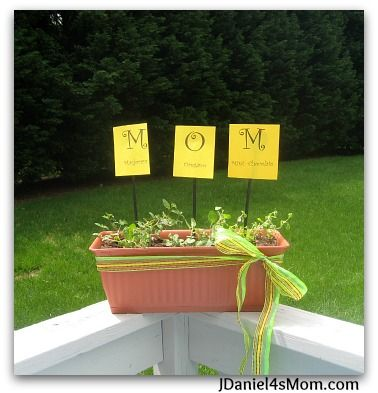 Ideas For Mothers Day, Mother Day Gifts, Science Ideas, Preschool Ideas,  Teaching Ideas, Secret Boards, Tenth Anniversary, Garden Gifts, Handmade  Gifts