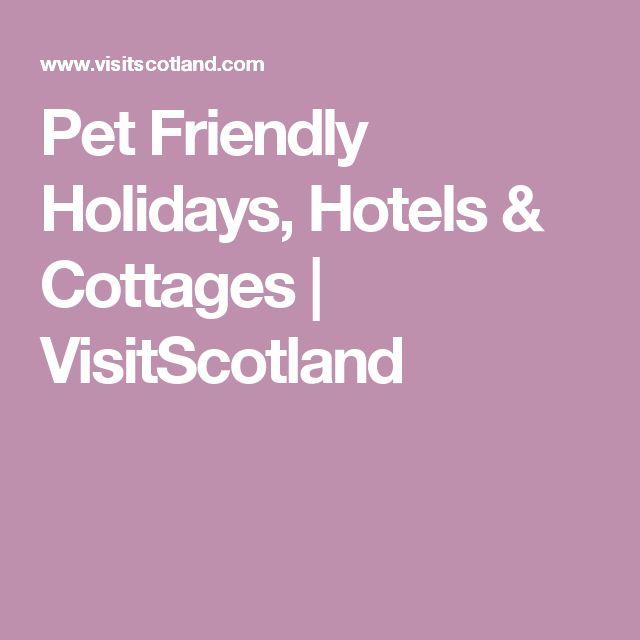 Pet Friendly Holidays, Hotels & Cottages   VisitScotland
