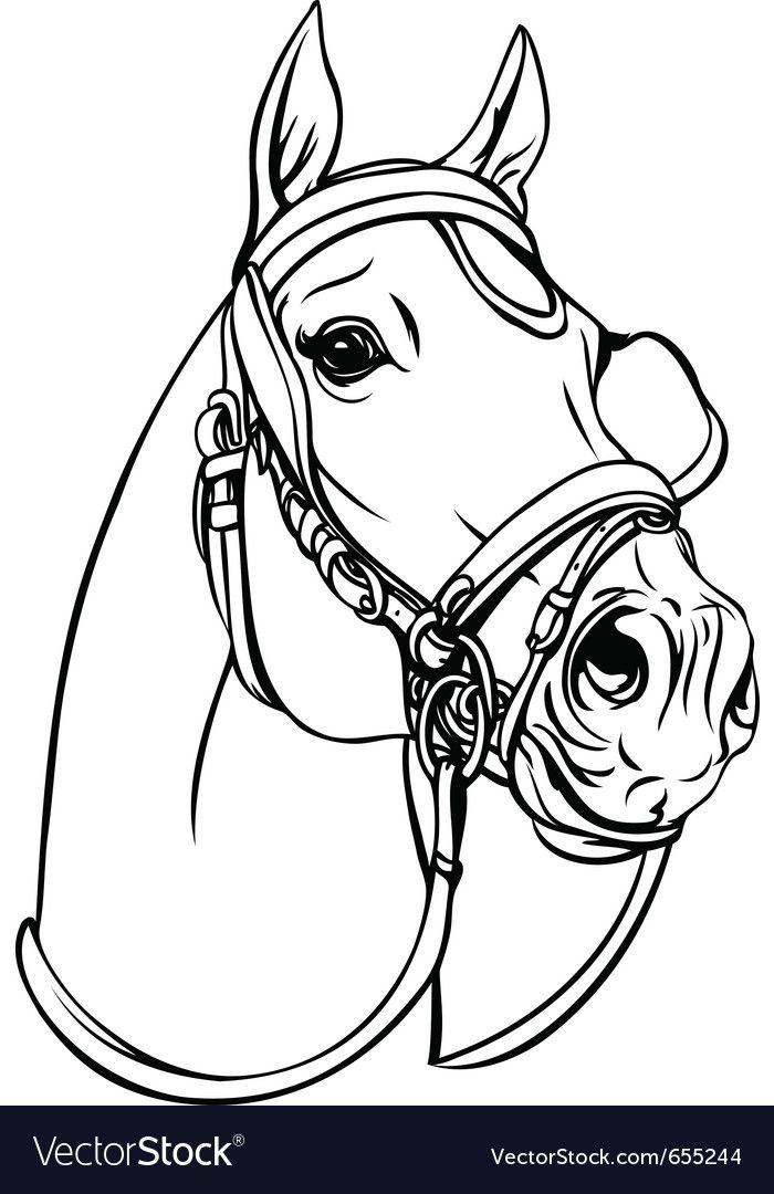 malvorlagen pferde jogja  amorphi