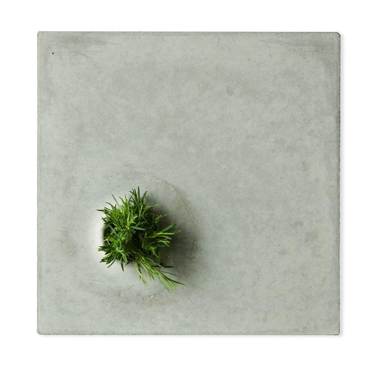 Grey to Green / Design by Caroline Brahme