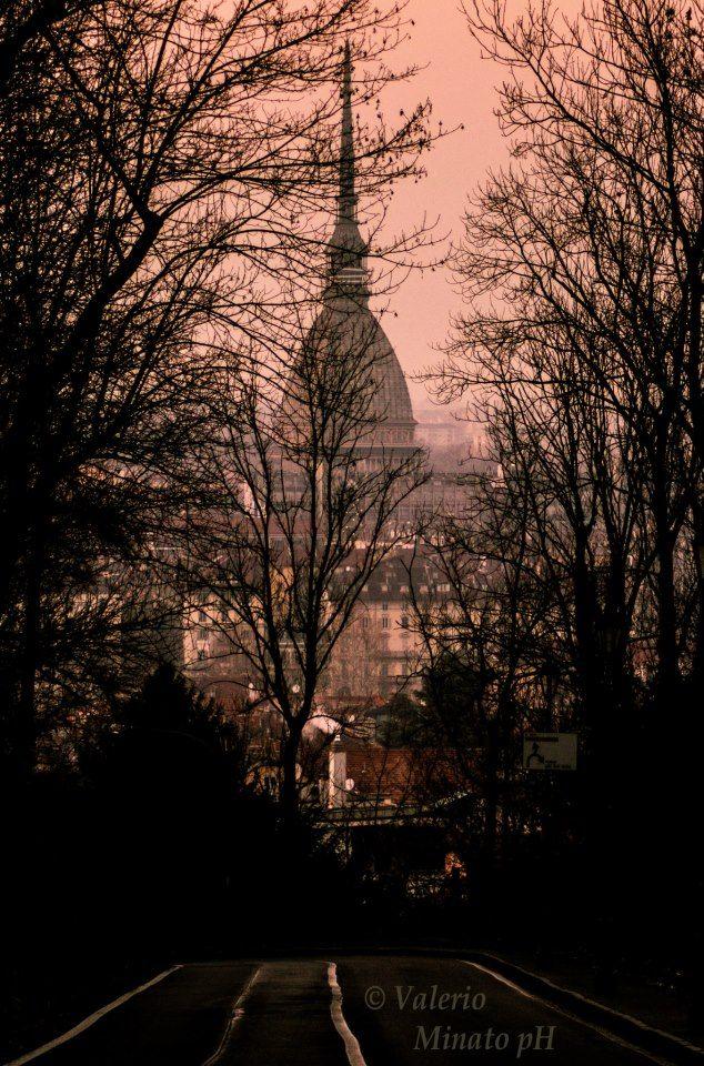 by Valerio Minato #Torino, Turin, , province of Turino , Piemonte region Italy