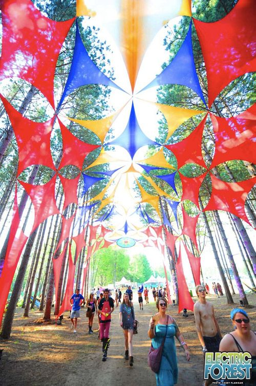 Gallery 2012 :: Electric Forest Festival I CAN'T WAIT