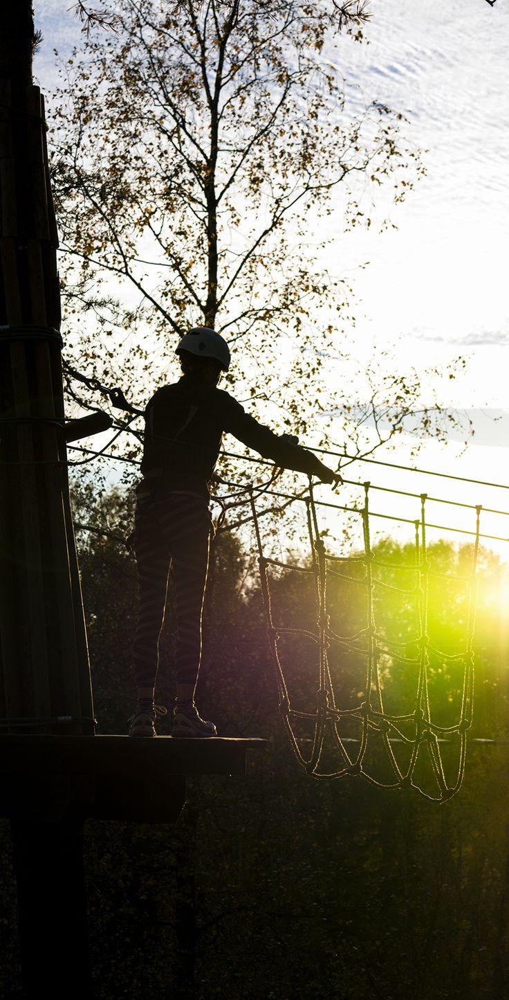 Auringonlasku mustalla radalla. Sunset on the black course.  #seikkailupuisto #treetopadventure #espoo #finland