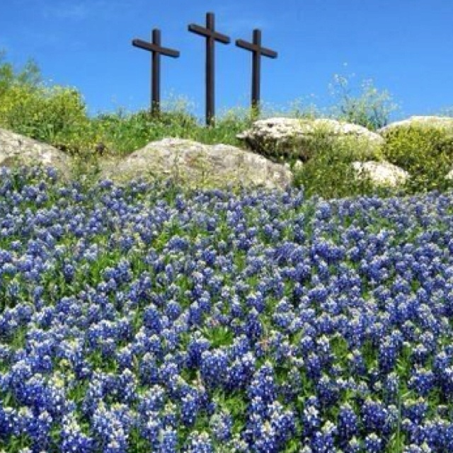 What a Texas Easter looks like.