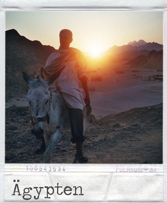 Egypt photo album on Lomoherz