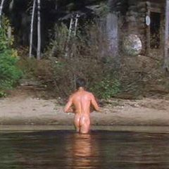 Pierce Brosnan images PIERCE BROSNAN NUDE IN GREY OWL. wallpaper and background photos