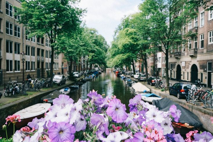 Where and What: Amsterdam City Guide