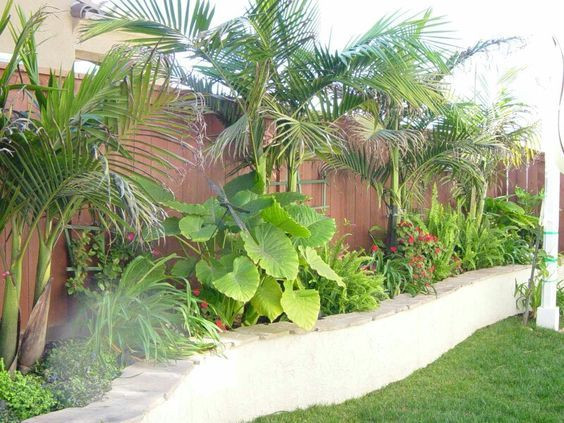 #tropical #landscaping: Love this